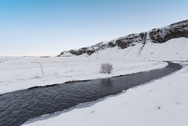 winterscape royaltyfri fotografi