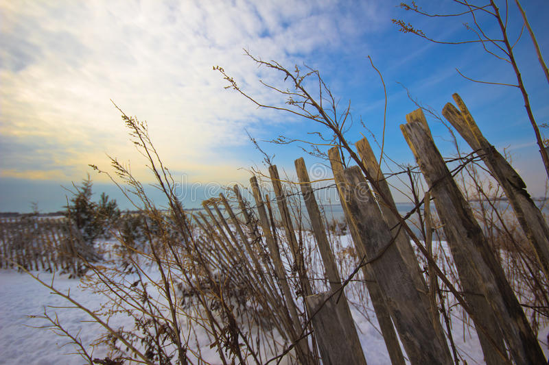Winterscape Beach royalty free stock photography