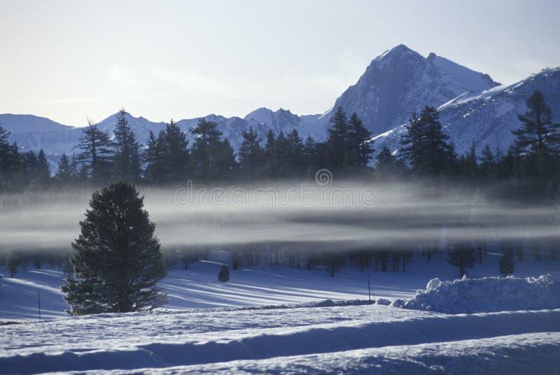Winterscape i toppig bergskedja Nevada royaltyfri foto