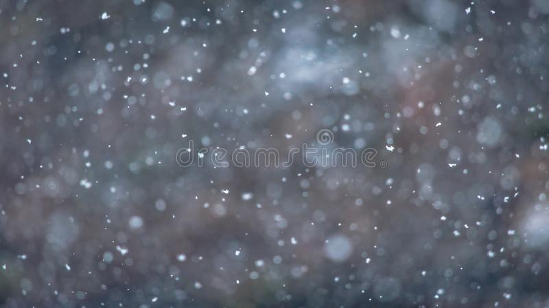 Winterscape with Natural snowfall background for winter theme royalty free stock photos