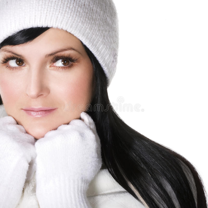 Winterschönheit stockfotos