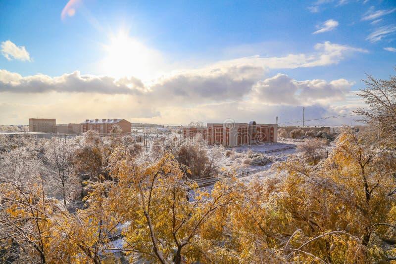 Winterschnee und -sonne, Himmel und Bäume lizenzfreies stockbild