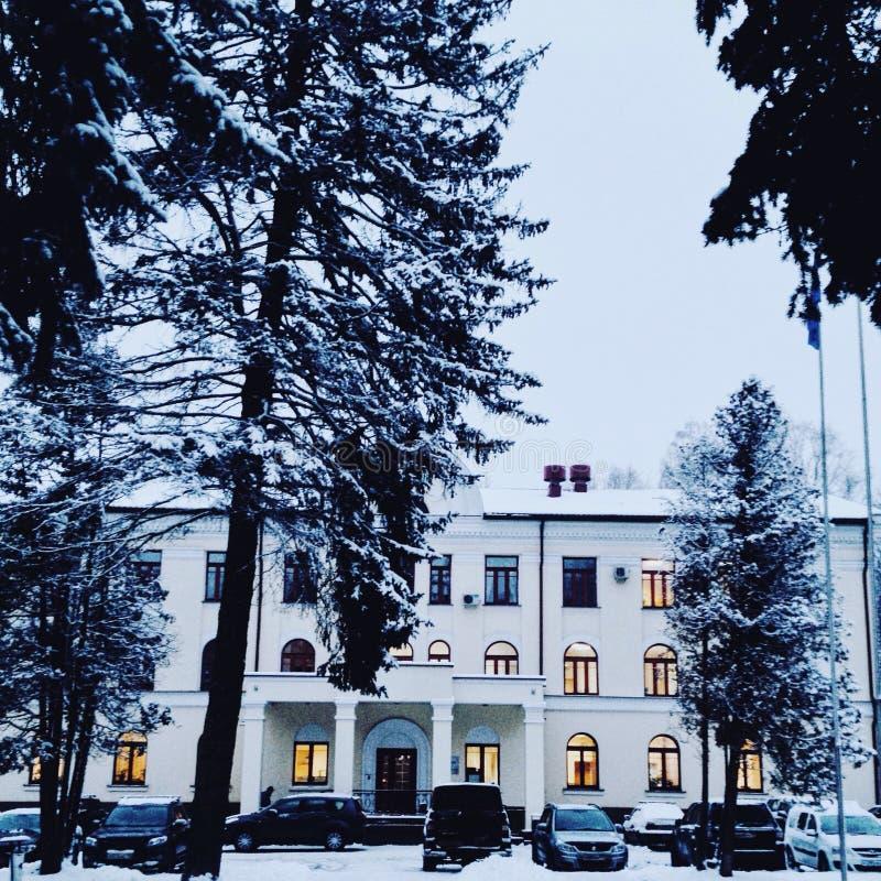 Winterschneehaus-Baumlandschaft stockbild