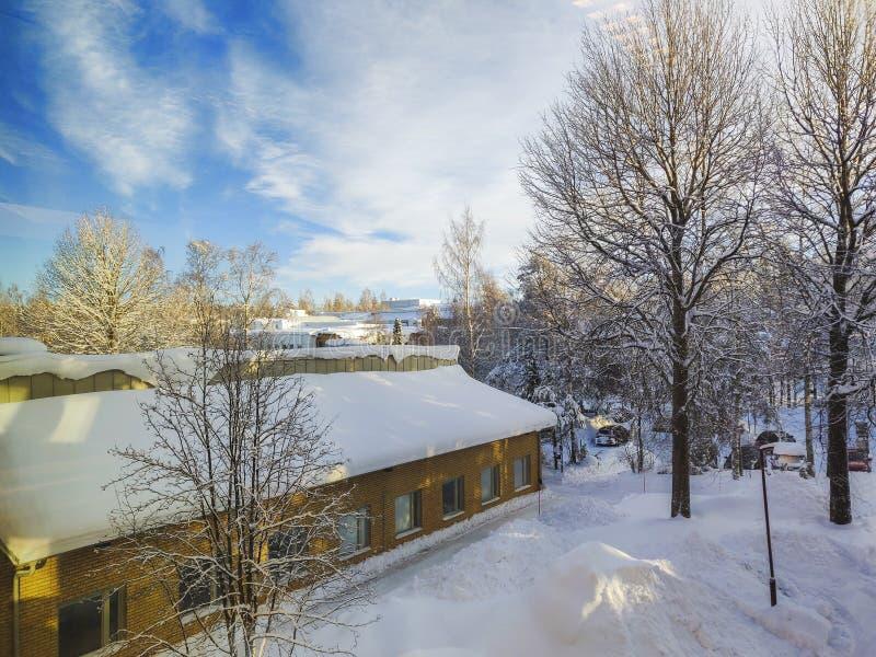 Winterschneelandschaft unter der Wolke füllte blauen Himmel und Schnee belastete Kiefer stockfotografie