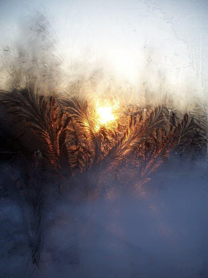 Winterse zonsondergang royalty-vrije stock fotografie