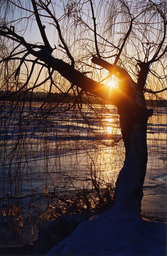 Wintersonnenuntergang auf dem Dniepr Fluss stockfotos