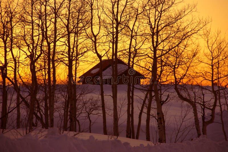 Wintersonnenuntergang: Haus und bloße Espen lizenzfreies stockfoto
