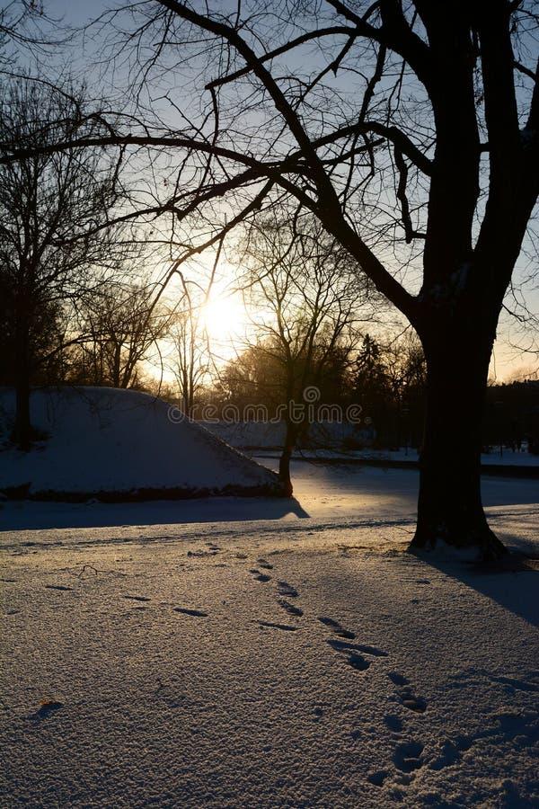 Wintersonnenuntergang in Toompark tallinn Estland stockfotografie