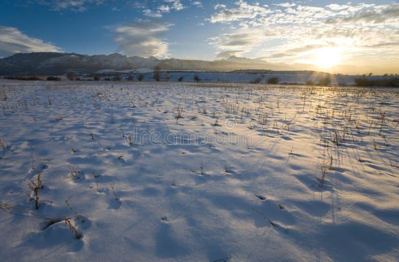 Wintersonnenuntergang (zwölf) stockfotografie