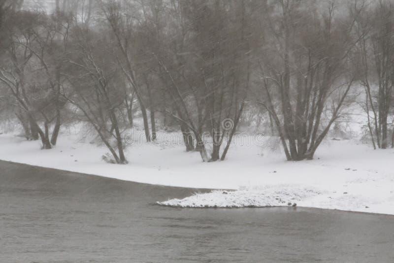 Winterstorm på den Rhine River Tyskland royaltyfri fotografi