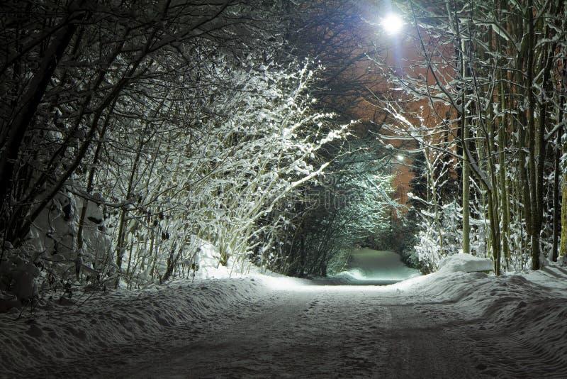 Winterstraße lizenzfreie stockbilder