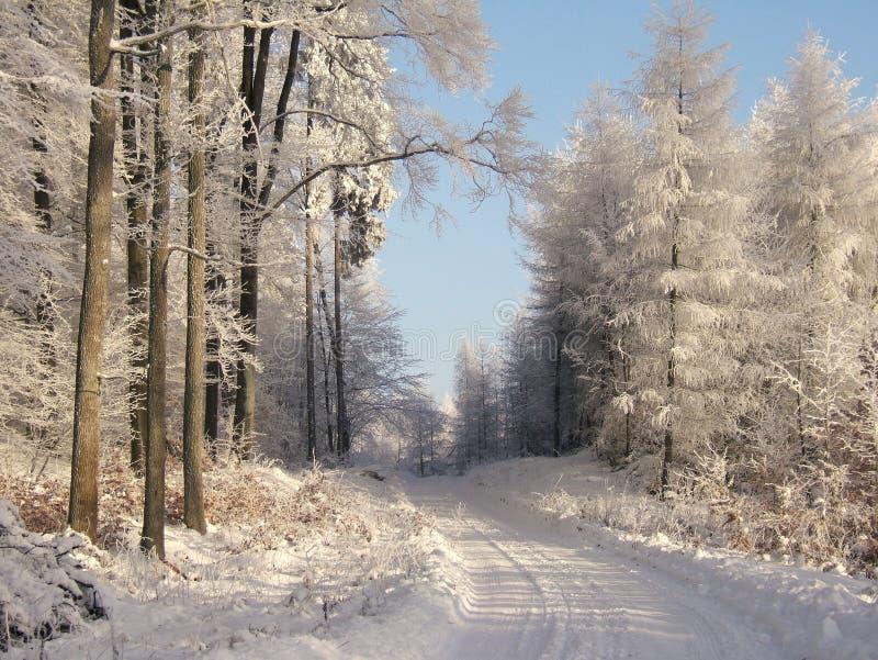 Winterstraße stockfoto