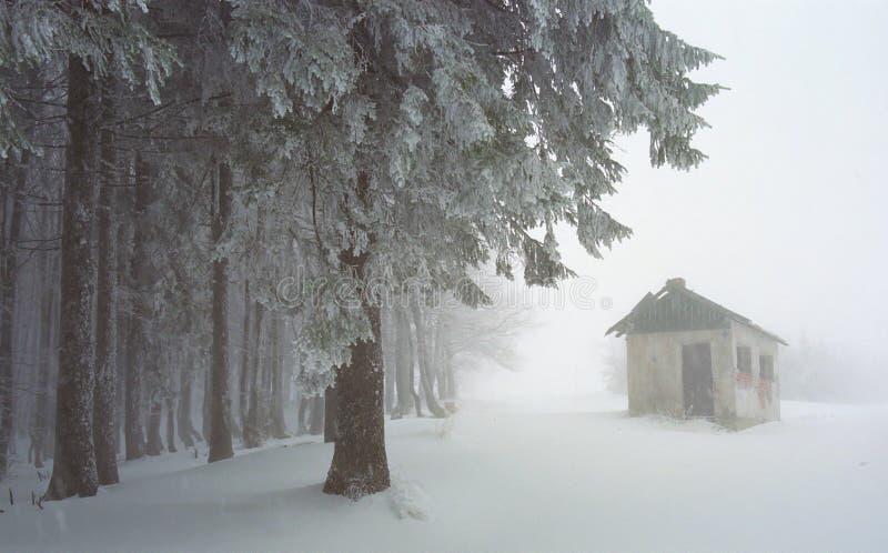 Winterszene stockfotos