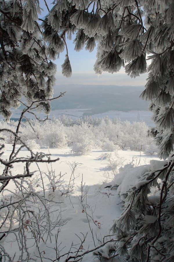 Winterszene in Bulgarien lizenzfreies stockbild