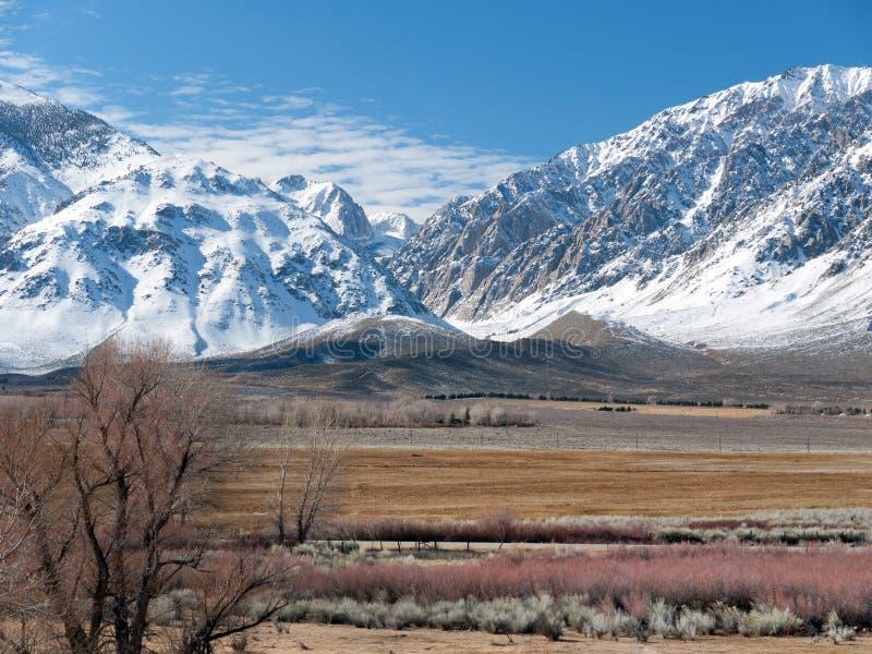 Winterszene in der östlichen Sierra Nevada-Reichweite stockfoto