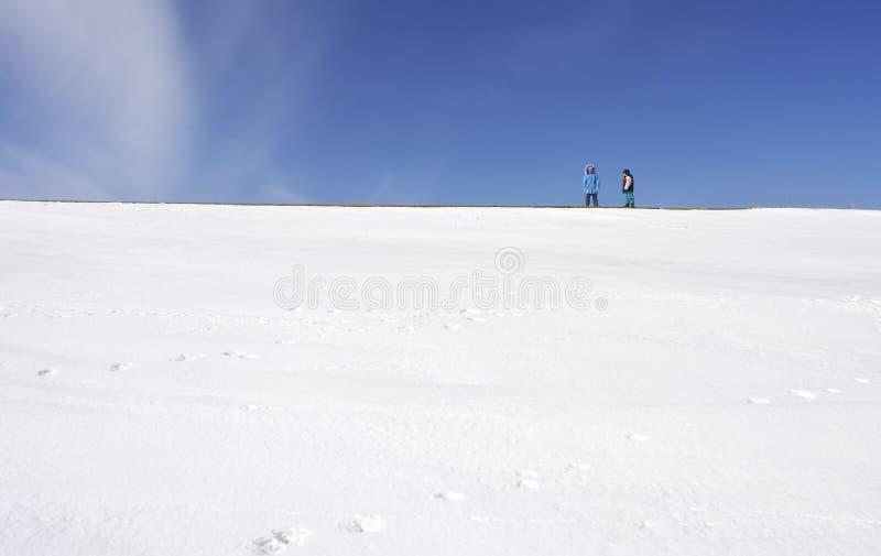 Wintertag lizenzfreie stockfotos