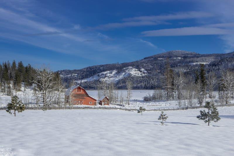 Wintertijd in het noorden van Idaho royalty-vrije stock fotografie