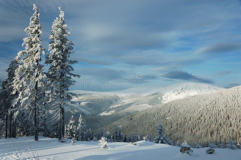 Wintertime imagem de stock royalty free