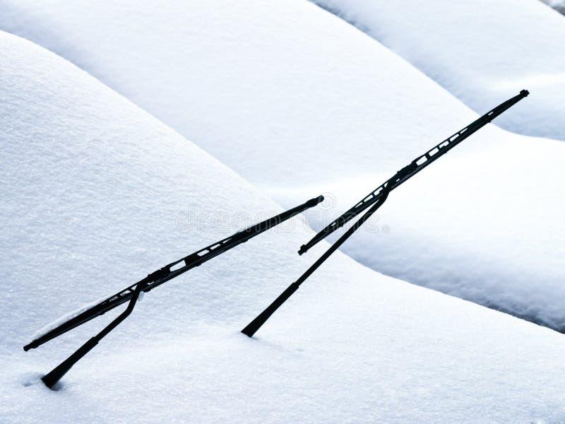 Wintertime стоковая фотография