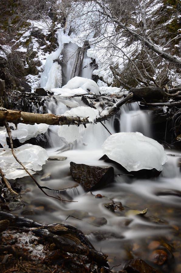 Wintertime blokuje w górę ten matecznik siklawy zdjęcia royalty free
