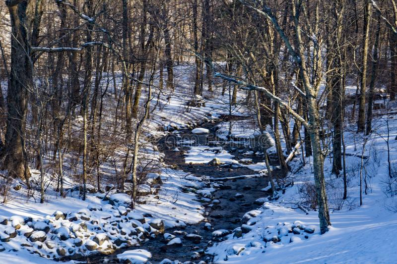 A Winter View of a Wild Mountain Trout Stream. A wintertime view of a wild mountain trout stream located in the Blue Ridge Mountains of Virginia, USA royalty free stock photo