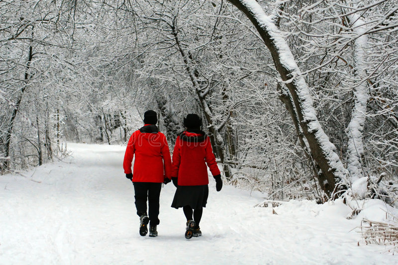 Download A Wintertime Walk stock image. Image of beauty, people - 4086429
