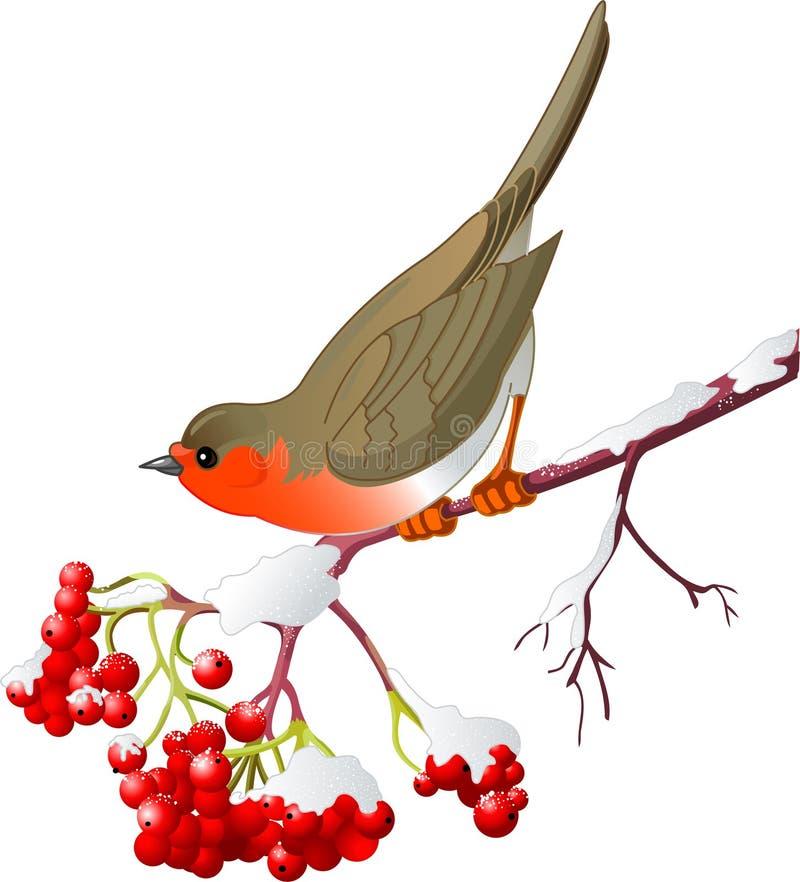 Wintervogel vektor abbildung