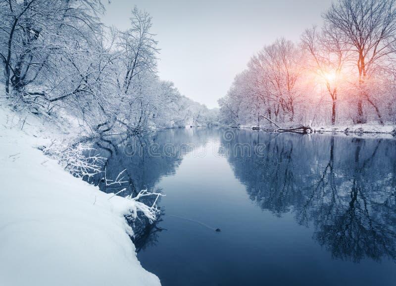 Winterwald auf dem Fluss bei Sonnenuntergang Bunte Landschaft mit schneebedeckten Bäumen stockbild