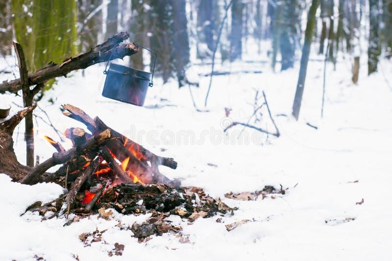 Winterwald, der touristische warme Tee in einem Topf stockfotografie