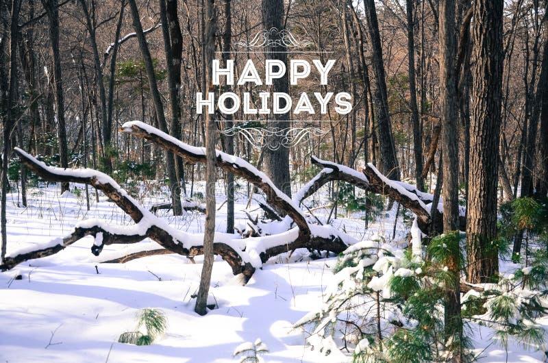 Winterwald mit frischem Schnee und frohe Feiertage überlagert stockfotografie