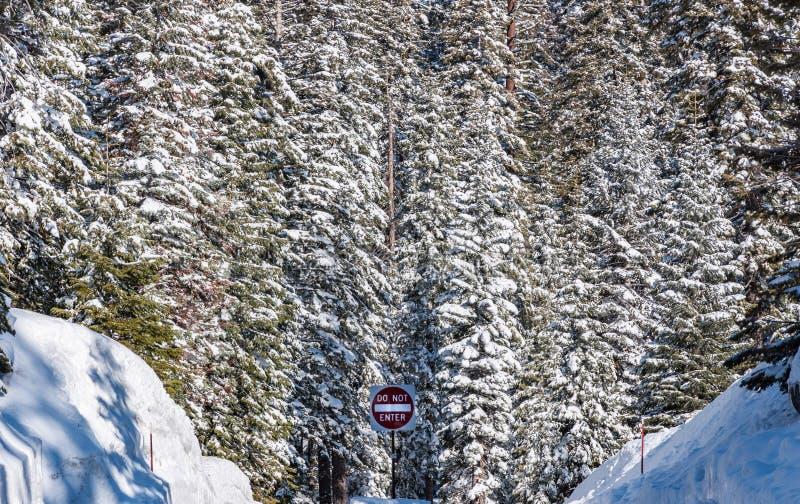 Winterwaldhintergrund und Betreten Sie nicht das Schild in einem abgelegenen Gebiet des Sequoia-Nationalparks in Kalifornien, USA lizenzfreie stockbilder
