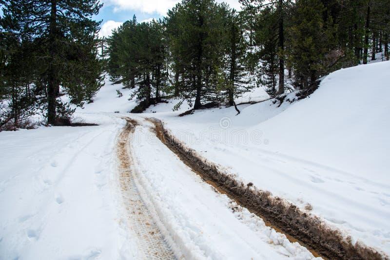 Winterwaldlandschaft mit gefrorener unpassierbarer Straße stockfoto