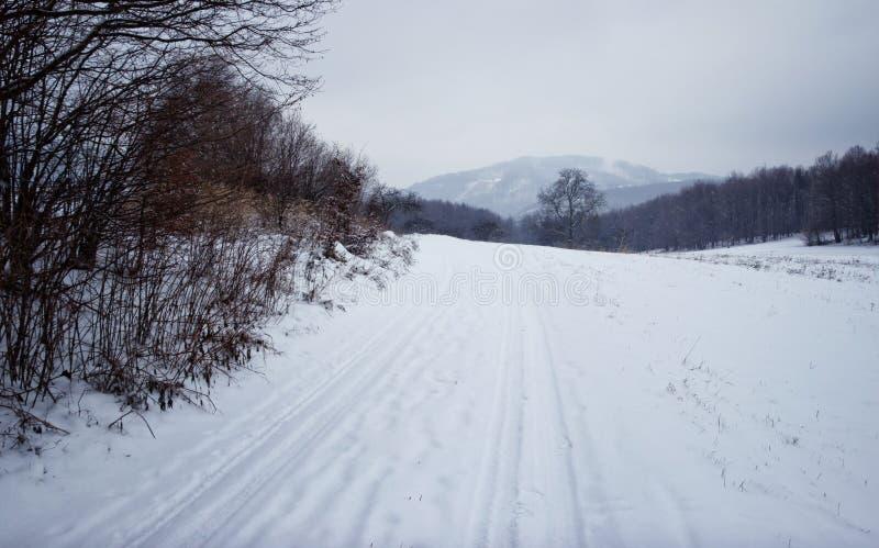 Winterweg stockfotografie