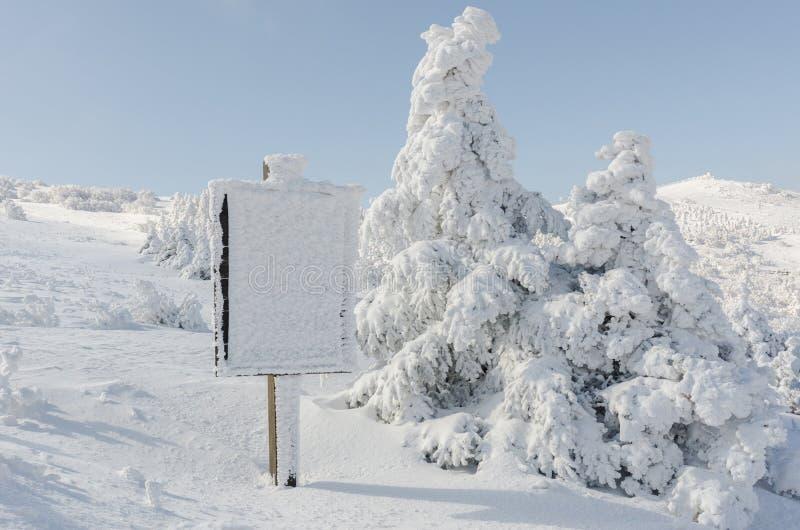 Winterweißschnee Weihnachtshintergrund mit schneebedeckten Tannenbäumen die schönste Landschaft, Sobaeksan-Berg in Korea stockfoto