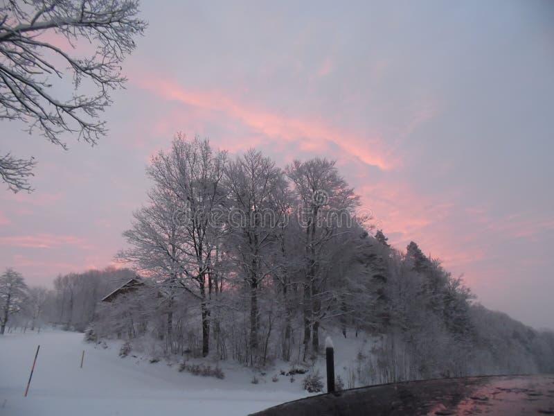 Winterwonderland immagini stock libere da diritti