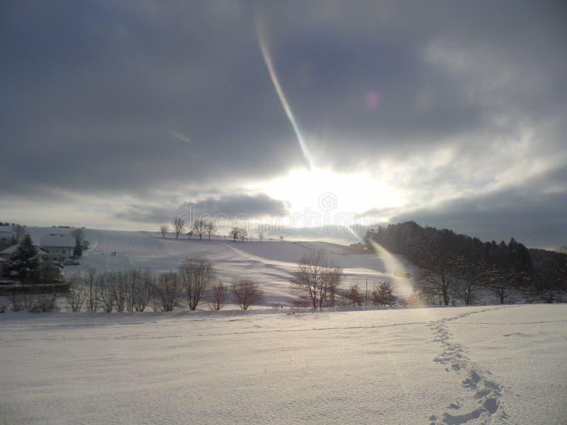 winterwonderland стоковое изображение rf