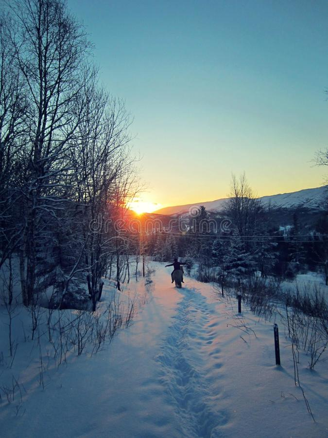 winterwonderland obrazy royalty free