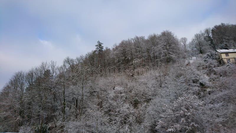 winterwonderland zdjęcie stock