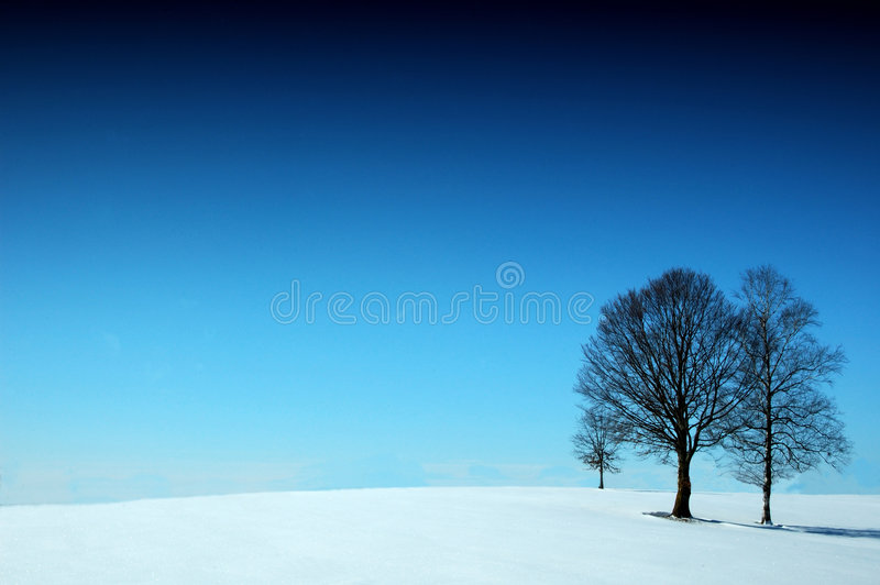 Winterwunder stockfotografie