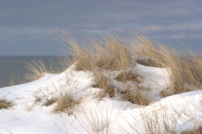 Wintery coast stock photo