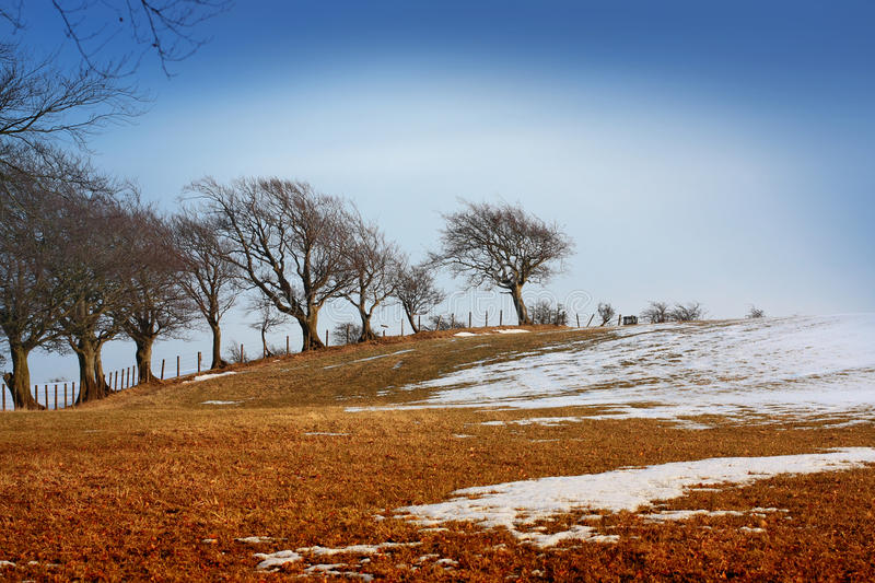 Download Wintery landscape stock image. Image of fresh, frozen - 13352073
