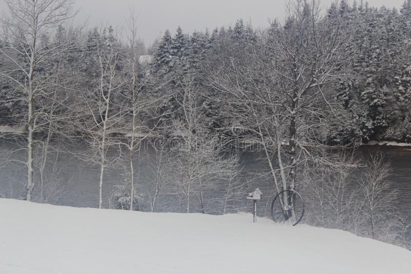 Wintery scene royalty free stock photos