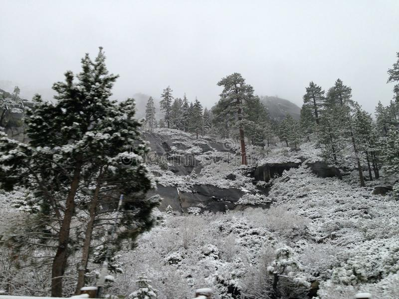 Winterzeit in Sacramento Kalifornien stockbild