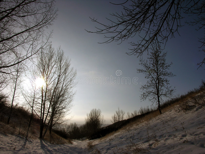 Wintry countryside
