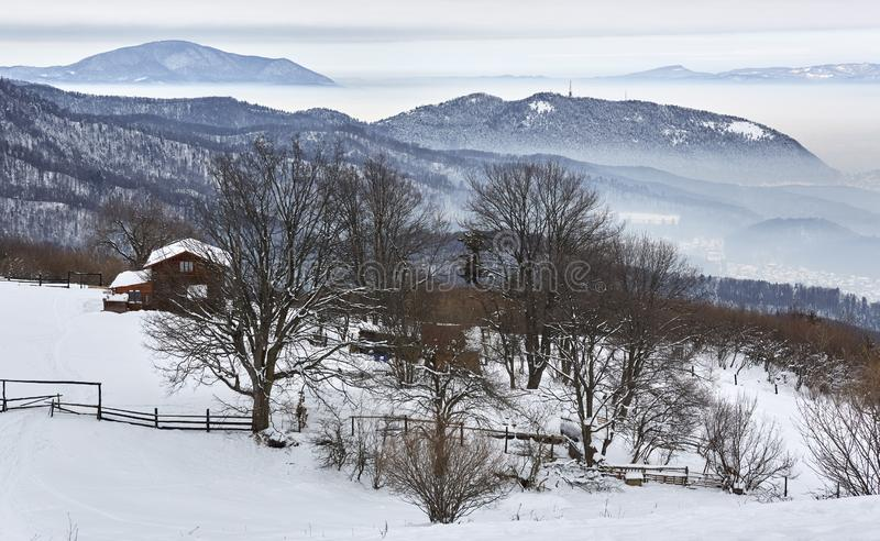 Wintry grey morning landscape up in the mountains near Brasov city, Romania royalty free stock image