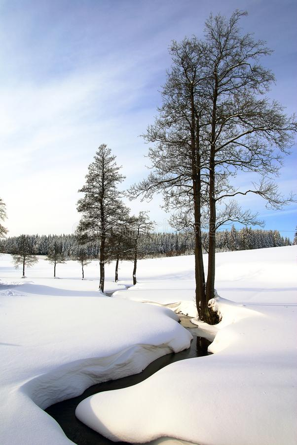 Free Wintry Landscape Scenery Royalty Free Stock Image - 22639596