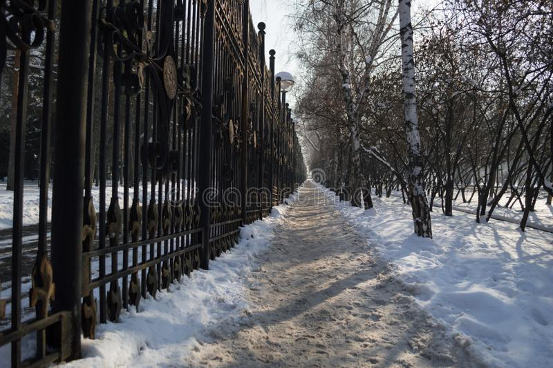 Wintry Street in Almaty, Kazakhstan.  stock photo