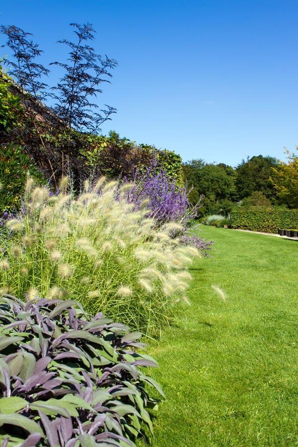 Wiodący ścieżki througn kraju angielski ogród obrazy royalty free