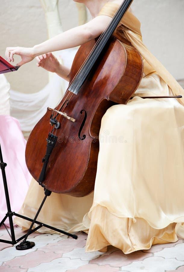 wiolonczelowy muzyk zdjęcia stock