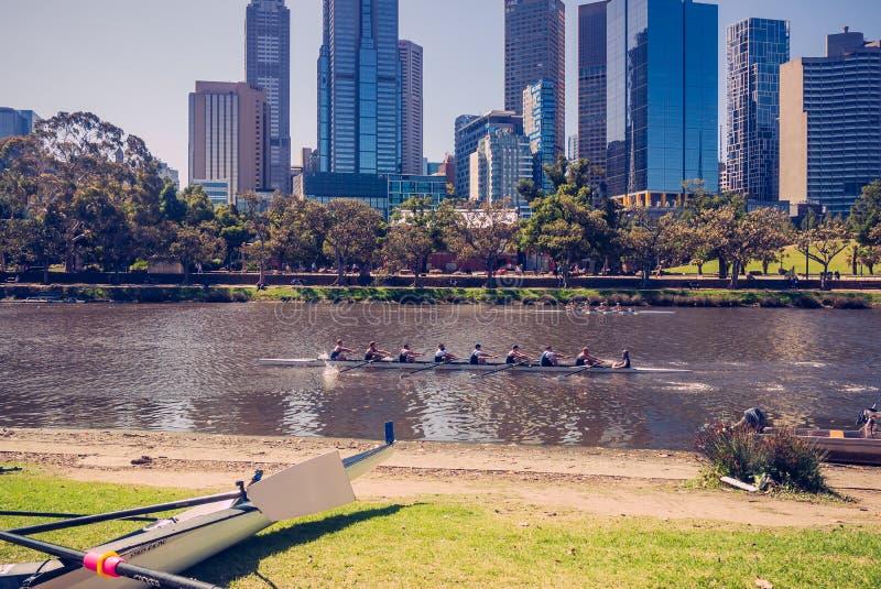 Wiosłujący na Yarra rzece, Melbourne 4PM, 25 Luty, 2017 zdjęcia stock